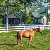 KL-Realty--Pike-exterior-pasture
